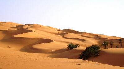 Marrakech To Fes Desert Tour Via Merzouga